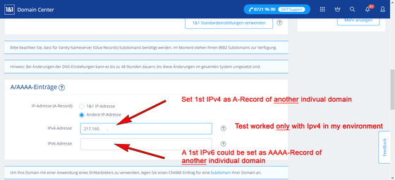 Set the 1st IPv4 as A-record of the 1st DNS domain.